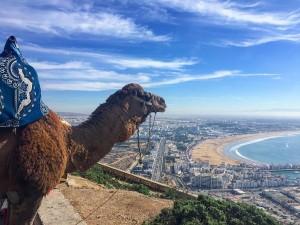 Visite d'Agadir